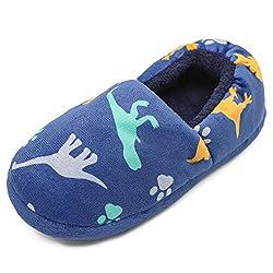 6. MaiYi Kids Slip-on Dinosaur Home Slippers