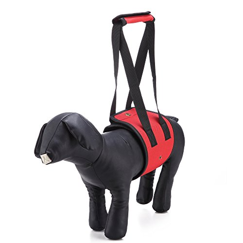LXLP Dog Lift Harness Support Sling Helps Dogs with Weak Front or Rear Legs Stand Up, Walk, Get Into Cars, Climb Stairs. Best Alternative to Dog Wheelchair (Small, Red)