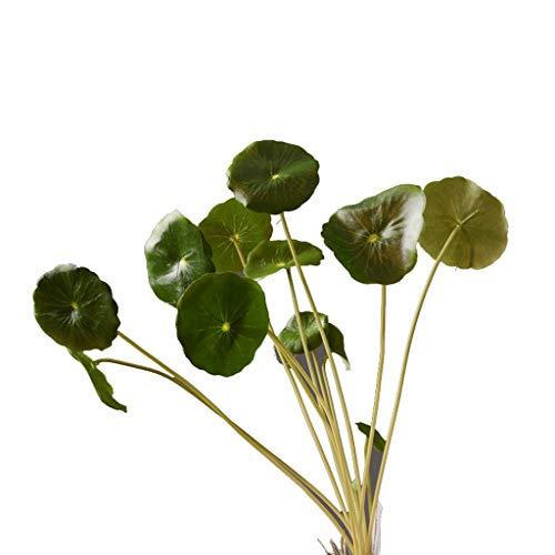 Nep bloem TXC Tang Dynastie Thuis Simulatie Koper Munt Gras Groene Planten Tafel Woonkamer Bloem Arrangement Heldere kleuren