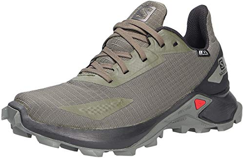 Salomon Alphacross Blast Cswp black/green (L41123000)