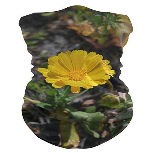 Máscara de tela para mujer, pañuelos multifuncionales, patrón de costura, unisex, color amarillo, con diseño de flores, para hombre y mujer, para uso al aire libre, diadema para la cabeza, toalla facial lavable en el interior