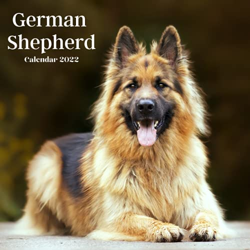 German shepherd Calendar 2022: German shepherd 2022 calendar , Calendar 2022-2023 Size 8.5 x 8.5 Inch,18 Month Calendar 2022 For Women, Men, Kids & German shepherd Lovers