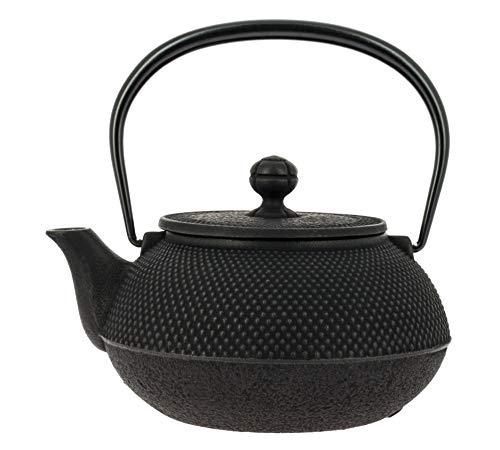 Iwachu Japanische Gusseisen Teekanne mit Filter und Traditionelles Design 900 ml schwarz