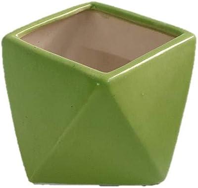 "Root Bridges 4"" Geometric Ceramic Pot (Green)"