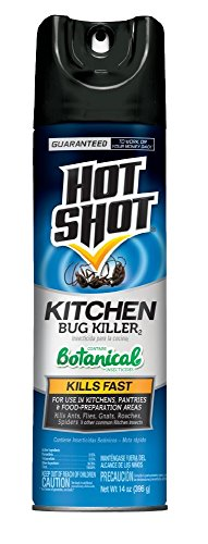 Hot Shot 100046102 4470 14-Ounce Kitchen Bug Killer Aerosol, Case Pack of 1