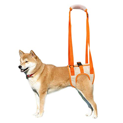 ROZKITCH Dog Lift Harness, Pet Rear Support Aid Veterinarian Approved Sling for Old K9 Help with Poor Stability, Back Leg Hip Disabled Joint Injury Elderly and Arthritis ACL Rehabilitation Rehab