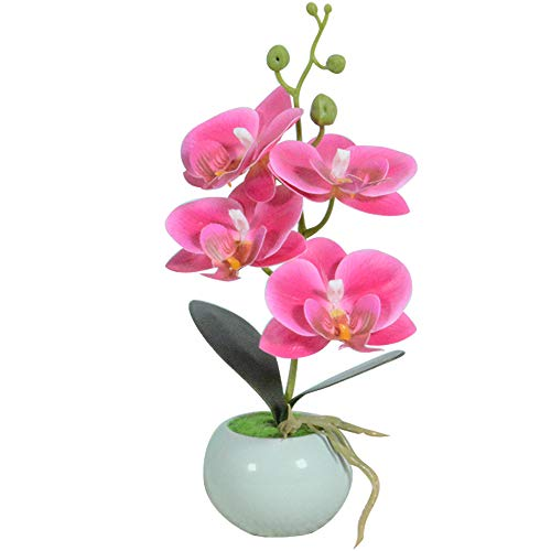 VIVILINEN Mini Flores Artificiales Plásticos Flor de Phalaenopsis realistas Orquídea Mariposa con Maceta Imitación Cerámica Decoración Cálida para Hogar Dormitorio y Oficina (Rosa)