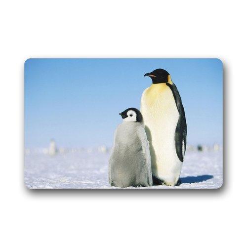 Doubee Adapter Neuf générique Mode Paillasson Design Penguin Premium Tapis Anti-Poussière Maison passwort 46 cm x 76 cm, Tissu, E, 18\