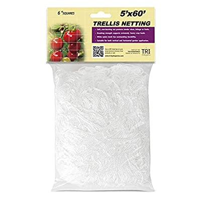 CastleGreens 5 x 60ft Plant Trellis Netting, Heavy-Duty Polyester Trellis Net Design for Climbing Fruits and Vegetables, Hydroponics Grow Net, Easy to Use, 1-Pack