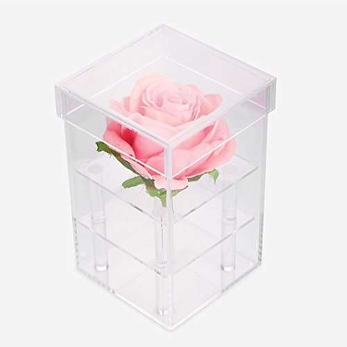 1 hole/ 9 holes Cosmetics, Jewelry Boxes & Organizers Boxes Box Rose Keep Box Water Jet For Flowers Organizer Make Up Storage Case Casket for Cosmetics Beads Rings Earrings Tool Containers[1 hole]