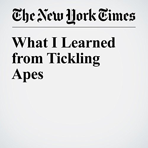 What I Learned from Tickling Apes audiobook cover art