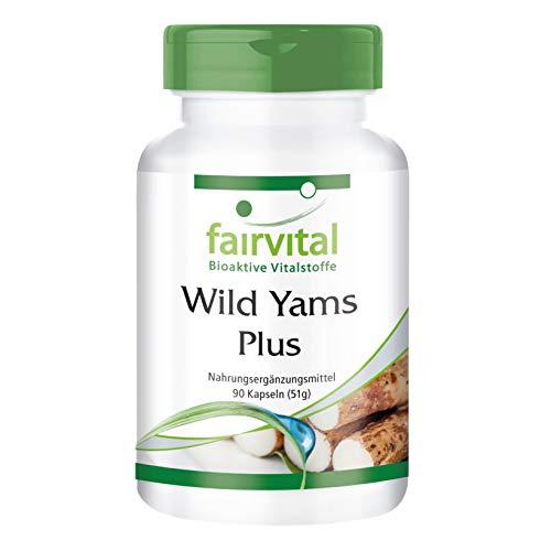 Wild Yam Plus - Ñame silvestre + Vitamina C y E + Beta-Caroteno + Zinc y Selenio - VEGANO - Dosis elevada - 90 Cápsulas - Calidad Alemana