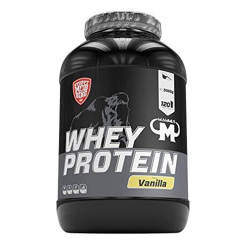 Mammut Nutrition Whey Protein, Vanilla, Molke, Eiweiß, Protein Shake, 3000 g