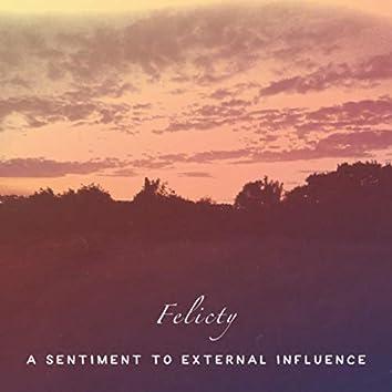 A Sentiment To External Influence