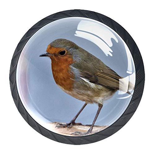 Best Bargain Animal Kingfisher Dresser Drawer Knobs Plastic Nursery Room Playroom Bedroom Decoration 1.38×1.10 in