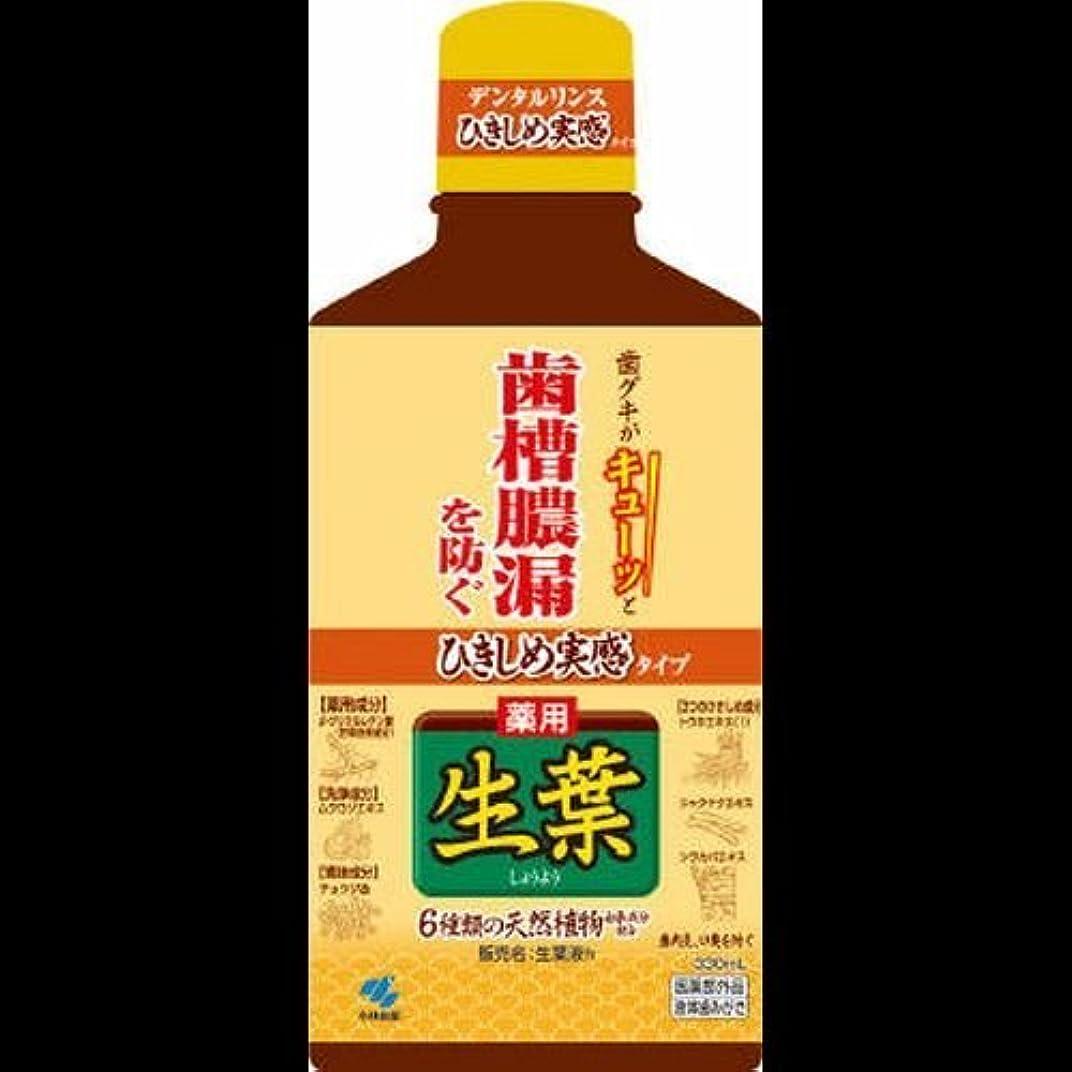 スコア不適切なキリン薬用生葉 ひきしめ生葉液 330mL ×2セット