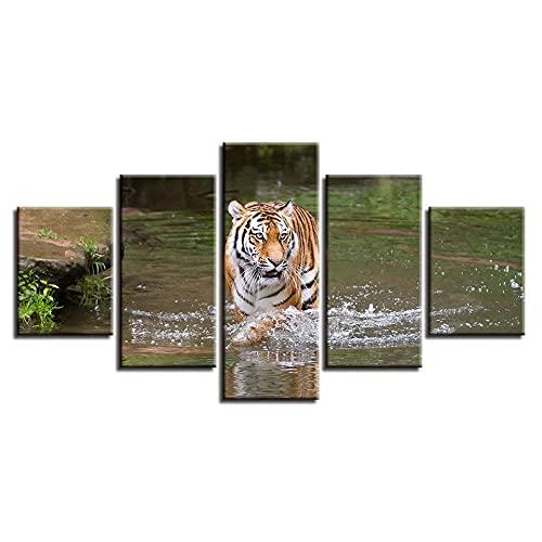 BDFDF Cuadro En Lienzo 5 Pieza Pintura En Lienzo Tigre Animal En El Río Arte De La Pared 5 Piezas Imagen Impresión En Lienzo Imagen De Pared Decoración del Hogar 150X80Cm