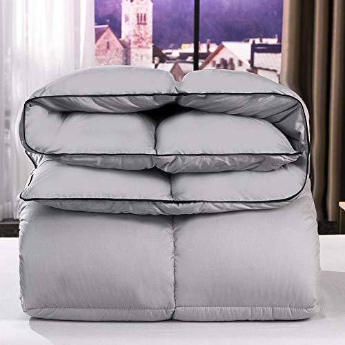 CHOU DAN bettdecke 200,Verdickte Bettdecken im Winter, um warm, einfach und doppelt für alle Jahreszeiten zu halten-150x200cm 1500g_Silber grau