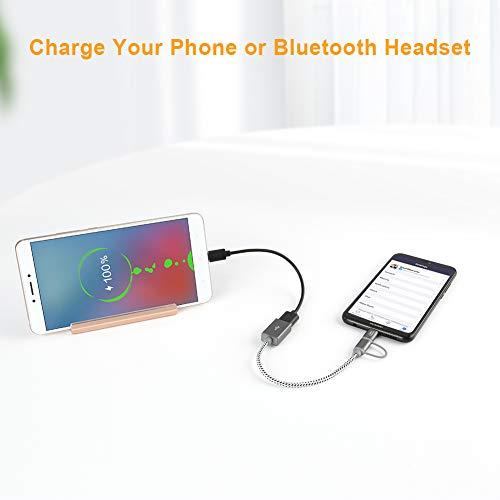 CableCreation Micro USB und USB C Adapter Kabel 2-in-1 Micro USB-B Stecker + Typ-C Stecker zu USB Buchse Adapterkabel, 18cm kurzes OTG Kabel für Pixel XL 2, Galaxy S9, S9+ usw. 0.6FT/Grau