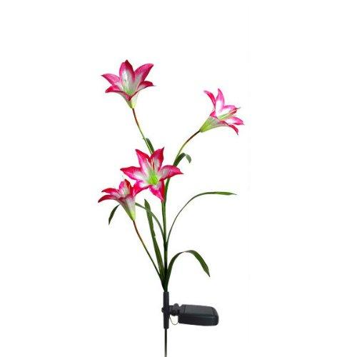 SYG_FR 4LED Fleur Solaire Lis Pelouse Cour Lampe Jardin Noël Extérieur Décoration