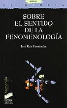 Sobre el sentido de la fenomenología (Filosofía. Hermeneia nº 28)