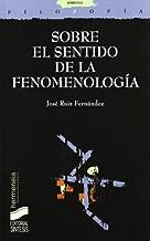 Sobre el sentido de la fenomenología (Filosofía. Hermeneia nº 28) (Spanish Edition)