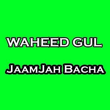 JaamJah Bacha