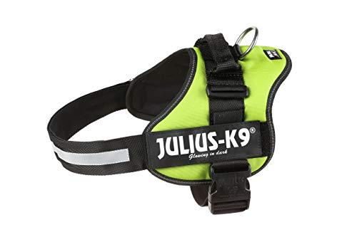Julius-K9, 162KW-2, K9 Powergeschirr, Hundegeschirr, Größe: XL/2, kiwi