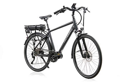 tretwerk DIREKT gute Räder Amsterdam 2.0 28 Zoll E-Bike Trekking, Herren-Fahrrad 10 Gang Kettenschaltung