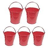 LPxdywlk 5pcs Vaso di Fiori Portatile Mini Secchio di Ferro Vaso di Fiori Creativo Colore della Caramella Vaso di Fiori Succulente Vaso Decorazione della Casa Rosso