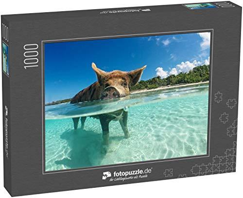 Puzzle 1000 Teile Wildes, schwimmendes Schwein auf Big Majors Cay auf den Bahamas - Klassische Puzzle, 1000/200/2000 Teile, in edler Motiv-Schachtel, Fotopuzzle-Kollektion 'Karibik'