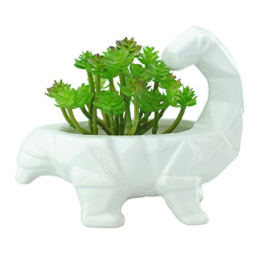 VanEnjoy 6 Inch Cute Cartoon Dinosaur Shape Ceramic Succulent Planter, Water Culture Hydroponics Bonsai Cactus Flower Pot,Air Plant Vase Holder Desktop Decorative Organizer (Supersaurus, White)