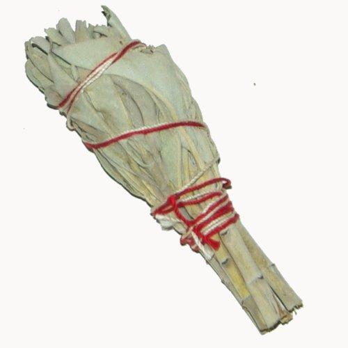 Baton Purificateur Sauge Blanche MINI- Salvia Apiana - Encens WHITE SAGE 1 x Mini Smudge 4'' (~11cm, ~20gr.) batons / empaqueter / ballot