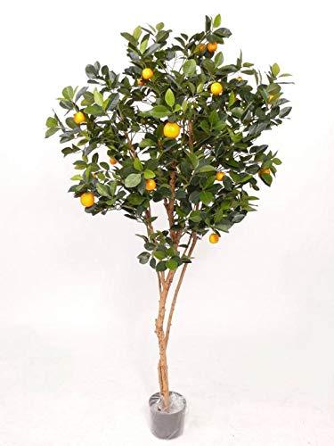 artplants.de Set 2 x Künstlicher Mandarinen Baum Mitra, 23 Früchte, grün, 180cm - Kunstbaum - Dekobaum