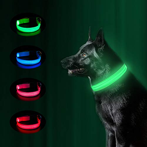 MASBRILL LED Dog Collar, USB Rechargeable Glowing Pet Collars Night Safety LED Light Up with Nylon Webbing Makes Your Dog Visible, Waterproof Flashing Light Collar Perfect for Large Dogs as Gift