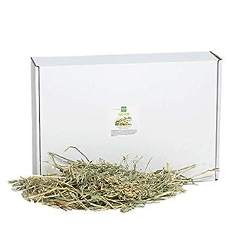 Small Pet Select Oat Hay Pet Food 10 Lb.