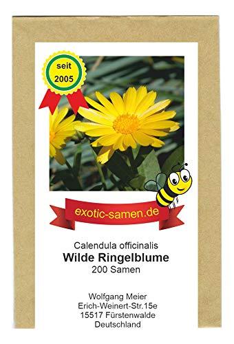 Gelbe Ringelblume Wildform - ungefüllt - Calendula officinalis - Bienenweide - Heilpflanze - 200 Samen