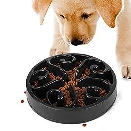 JASGOOD Slow Feeder Dog Bowl New Arriving Fun Interactive Feeder Slow Feeding Interactive Bloat Stop Dog Bowls