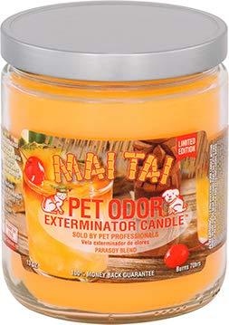 Pet Odor Exterminator 13oz jar Candle, Mai Tai Limited Edition