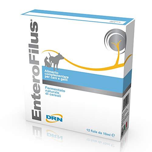 Enterofilus Ampoule 10 ml