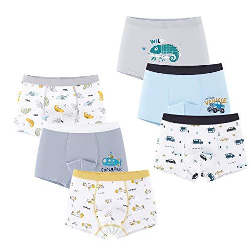LeQeZe Jungen Boxershorts Unterhosen Baumwolle 6er Pack Kinder Unterwäsche 2-11 Jahre (Jungen Autos 1, 6-7 Jahre)