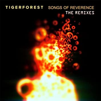 Songs of Reverence (The Remixes)