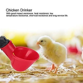 Nicoone Lot de 10 abreuvoirs automatiques en plastique pour poulet - Abreuvoir automatique - Outil amovible pour oiseau, caille, pigeon, poule