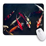 KENADVI マウスパッド 個性的 おしゃれ 柔軟 かわいい ゴム製裏面 ゲーミングマウスパッド PC ノートパソコン オフィス用 デスクマット 滑り止め 耐久性が良い おもしろいパターン (池鯉鯉動物野生生物自然中国の魚アジアの願望美容フィン東)