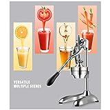 LJA Exprimidor de acero inoxidable - Exprimidor de cítricos para el hogar comercial para naranjas, limones, limas, pomelos, etc. Saludable, ecológico Fácil de operar