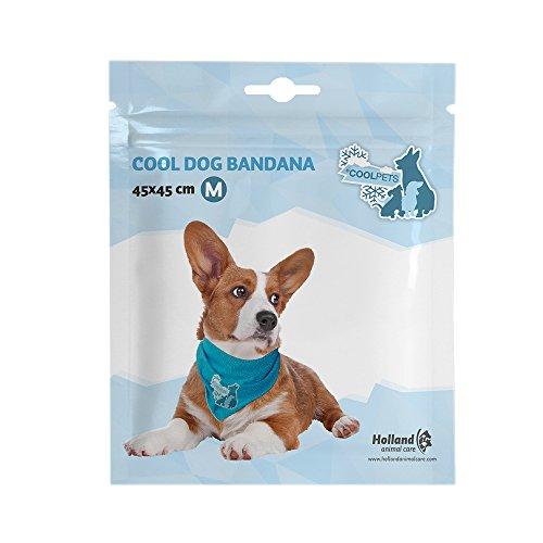 CoolPets Cool Dog Bandana – L - 2