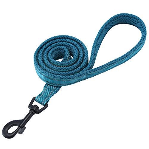 Kaka Mall Hundeleine High Density Nylon Material Reflektierendes Design Gut für Training und täglichen Gebrauch Hundeleine Gepolstert Blau 2.5 * 120CM