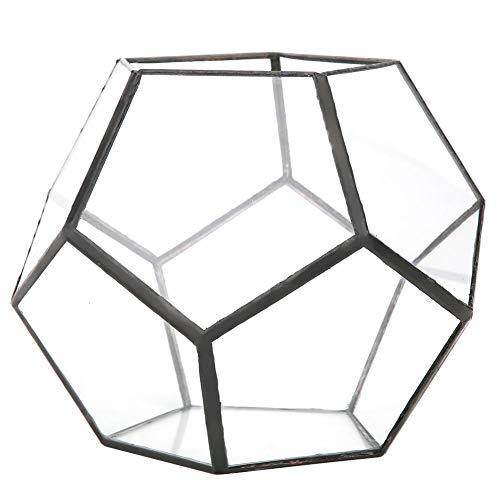 Fdit Cristal geométrico carnoso Flor habitación artesanía Invernadero Micro Paisaje Botella de...
