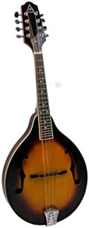Hohner 6 String Acoustic Guitar (AAM40TSB)