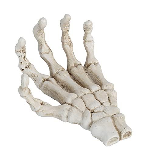 Mãos de esqueleto de Halloween, modelo de esqueleto de mão de plástico, resistente à corrosão de alta dureza, ornamentos de osso de mão leves para suporte de ferramentas de ensino